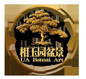 UA Bonsai - Malaysia Garden Landscape Design | Bonsai Landscape Design | Malaysia Bonsai | Bonsai for Sale | Chinese Juniper | Podocarpus Costalis
